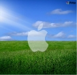 3-apple-1-in-fields