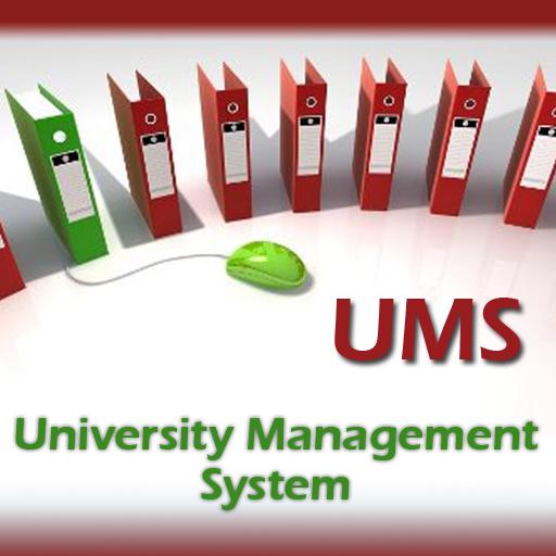Management Systems  U00ab Portfolio Types  U00ab Ifahja